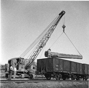 Wauchope Rail Siding, 1961