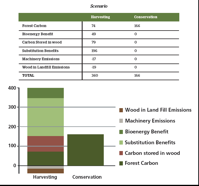 Tonnes of Carbon Stored, 23 january, 2013.png